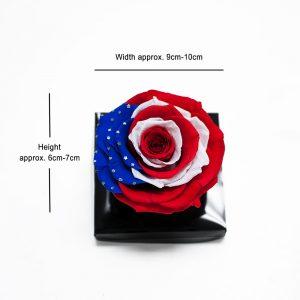 Jumbo American Flag Ecuadorian Eternity Flowers Preserved Roses 9cm to 10cm