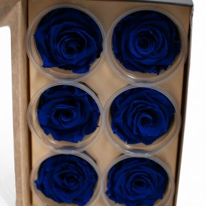 Royal Blue Ecuadorian Eternity Flowers Preserved Roses Pack of 6 6cm to 7cm