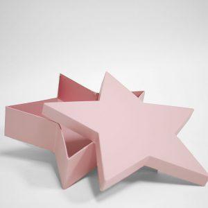 W6661 Pink Star Shape Flower Box