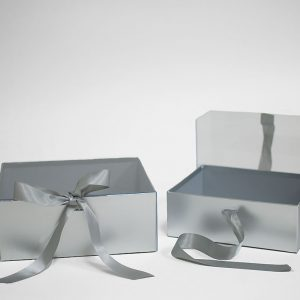 W7968 Silver Rectangular Flower Boxes With Clear Lid and Ribbon Set of 2