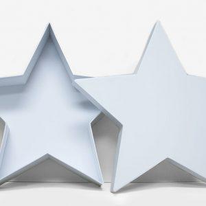 W6660 White Star Shape Flower Box