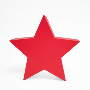 W6662 Red Star Shape Flower Box