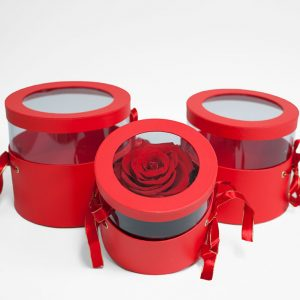 W6789 Red Set of 3 Round Flower Boxes With Window