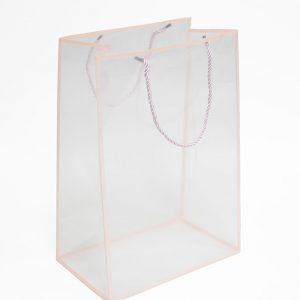 Pink Transparent Bag with Frame